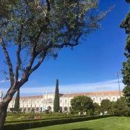 monastere arbre